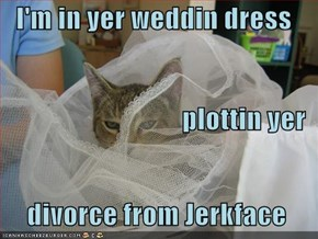 I'm in yer weddin dress  plottin yer   divorce from Jerkface
