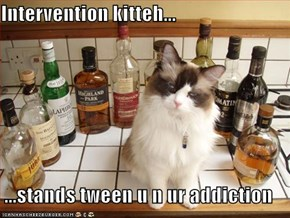 Intervention kitteh...  ...stands tween u n ur addiction