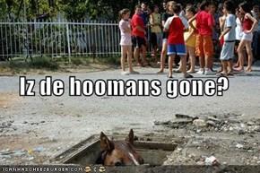 Iz de hoomans gone?