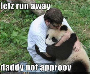 letz run away  daddy not approov