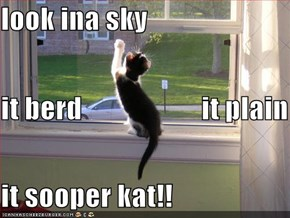 look ina sky it berd                     it plain it sooper kat!!