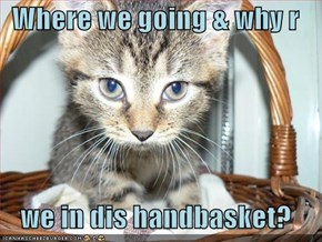 Where we going & why r   we in dis handbasket?