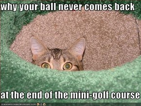 why your ball never comes back  at the end of the mini-golf course
