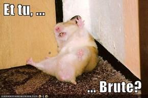 Et tu, ...  ... Brute?
