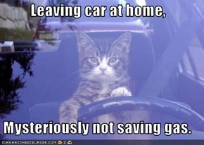 Leaving car at home,  Mysteriously not saving gas.