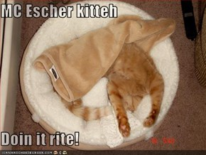 MC Escher kitteh  Doin it rite!