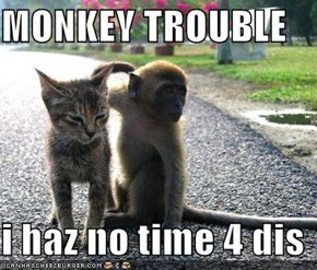 MONKEY TROUBLE  i haz no time 4 dis