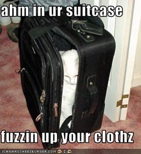 ahm in ur suitcase  fuzzin up your clothz