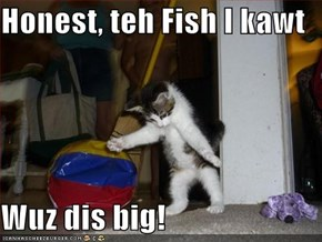 Honest, teh Fish I kawt  Wuz dis big!