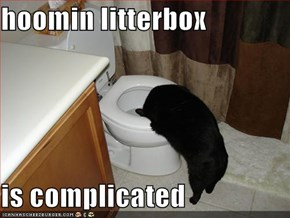 hoomin litterbox  is complicated