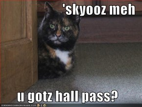 'skyooz meh  u gotz hall pass?