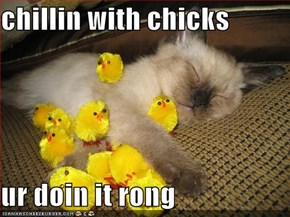 chillin with chicks  ur doin it rong