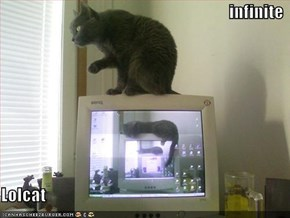 infinite  Lolcat
