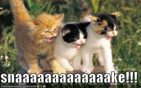snaaaaaaaaaaaaake!!!