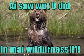 Ai saw wut U did  In mai wildurness!!1!