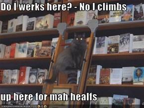 Do I werks here? - No I climbs  up here for mah healfs