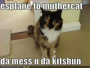 esplane to muthercat  da mess n da kitshun