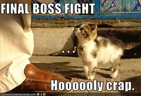 FINAL BOSS FIGHT . . . Hoooooly crap.