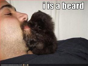 i is a beard