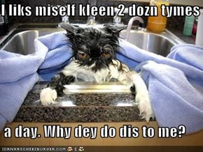 I liks miself kleen 2 dozn tymes   a day. Why dey do dis to me?