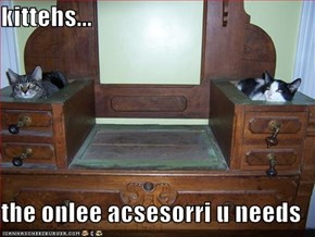 kittehs...  the onlee acsesorri u needs