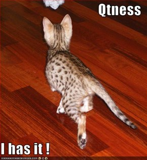 Qtness  I has it !