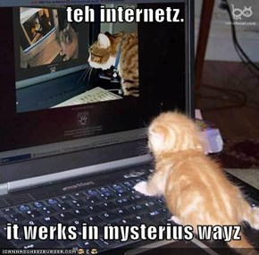 teh internetz.  it werks in mysterius wayz