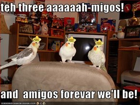 teh three aaaaaah-migos!  and  amigos forevar we'll be!
