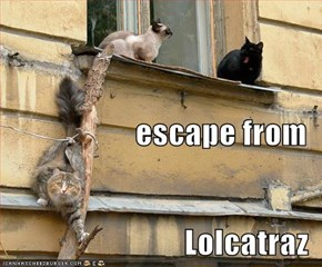 escape from Lolcatraz