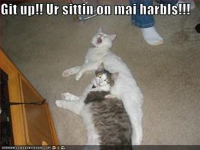 Git up!! Ur sittin on mai harbls!!!