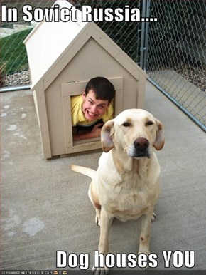 In Soviet Russia....  Dog houses YOU