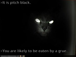 >It is pitch black.  >You are likely to be eaten by a grue.