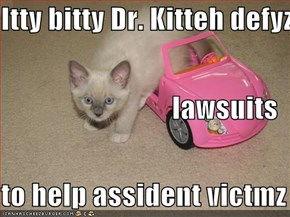 Itty bitty Dr. Kitteh defyz  lawsuits to help assident victmz