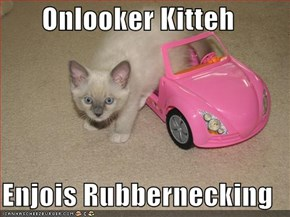 Onlooker Kitteh  Enjois Rubbernecking