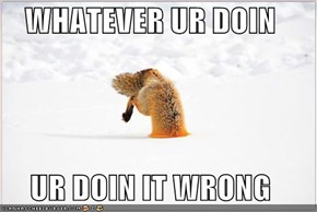 WHATEVER UR DOIN  UR DOIN IT WRONG