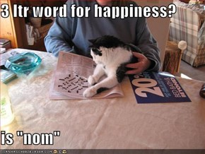 "3 ltr word for happiness?  is ""nom"""