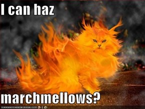 I can haz  marchmellows?