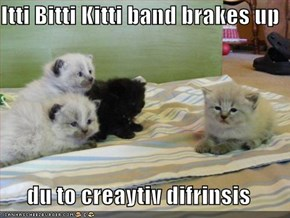 Itti Bitti Kitti band brakes up  du to creaytiv difrinsis