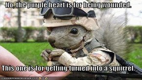 No, the purple heart is for being wounded.  This one is for getting turned into a squirrel.