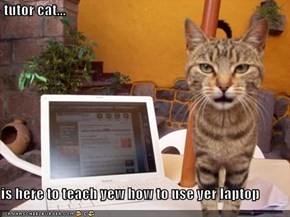 tutor cat...  is here to teach yew how to use yer laptop