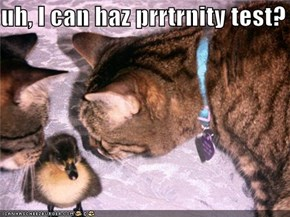 uh, I can haz prrtrnity test?