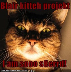 Blair kitteh projekt  I am sooo sKerrd!