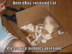 Dear eBay: received cat.  Please use airholes next time.