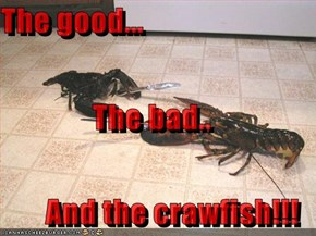 The good... The bad.. And the crawfish!!!