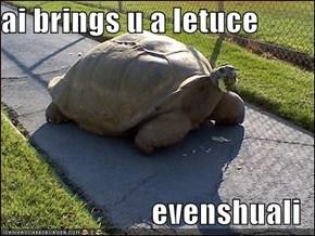 ai brings u a letuce  evenshuali