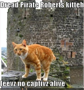 Dread Pirate Roberts kitteh  leevz no captivz alive