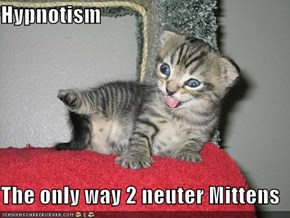Hypnotism  The only way 2 neuter Mittens