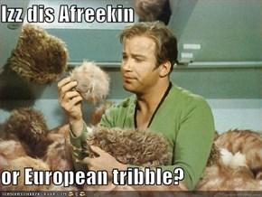 Izz dis Afreekin  or European tribble?