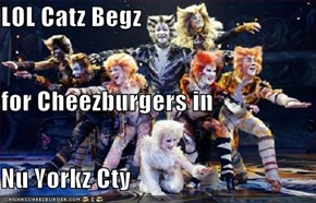 LOL Catz Begz for Cheezburgers in Nu Yorkz Cty