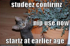 studeez confirmz                         nip use now     startz at earlier age